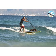 Curso Basico de Olas/Wave Paddle Surf